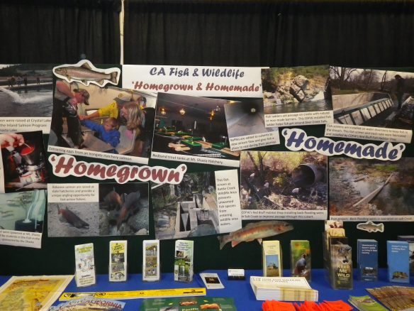The 2015 Shasta District Fair booth featured 'homegrown' salmon and redband trout, and 'homemade' fish screen, ladders and back-flooding weirs.