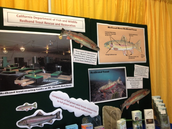 The 2015 Boat, Sport, and RV Show booth featured photos and text about the Redband Trout Rescue and Restoration Program.